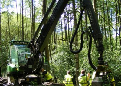 Credit Lockhart Garratt, Environmental Planning & Forestry Consultants: Arboriculture Team