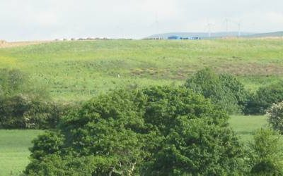 Maximised Funding for Woodland Creation