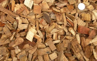 We need to avoid woodfuel becoming the next diesel