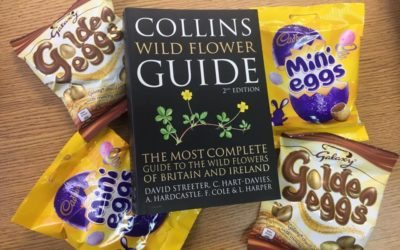 Win a Collins Wild Flower Guide and some Easter Chocolate