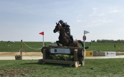 Environmental consultancy marks 20th anniversary with sponsorship of cross country eventing fences