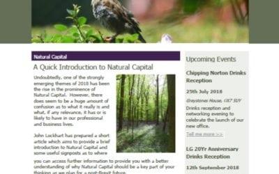 Lockhart Garratt: June Update