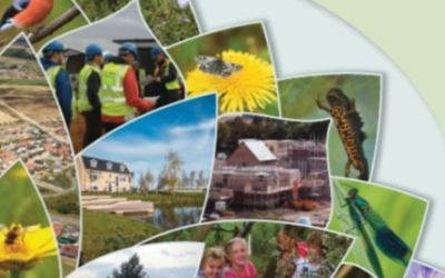 Developing with Nature Toolkit