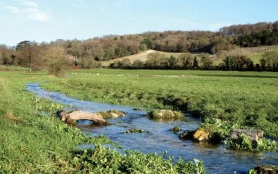 Two Decades of Change in Land Management