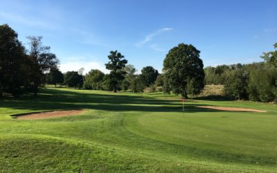 """Don't neglect your silent assets – a Northamptonshire golf clubs pro-active approach to effective tree and woodland management."""