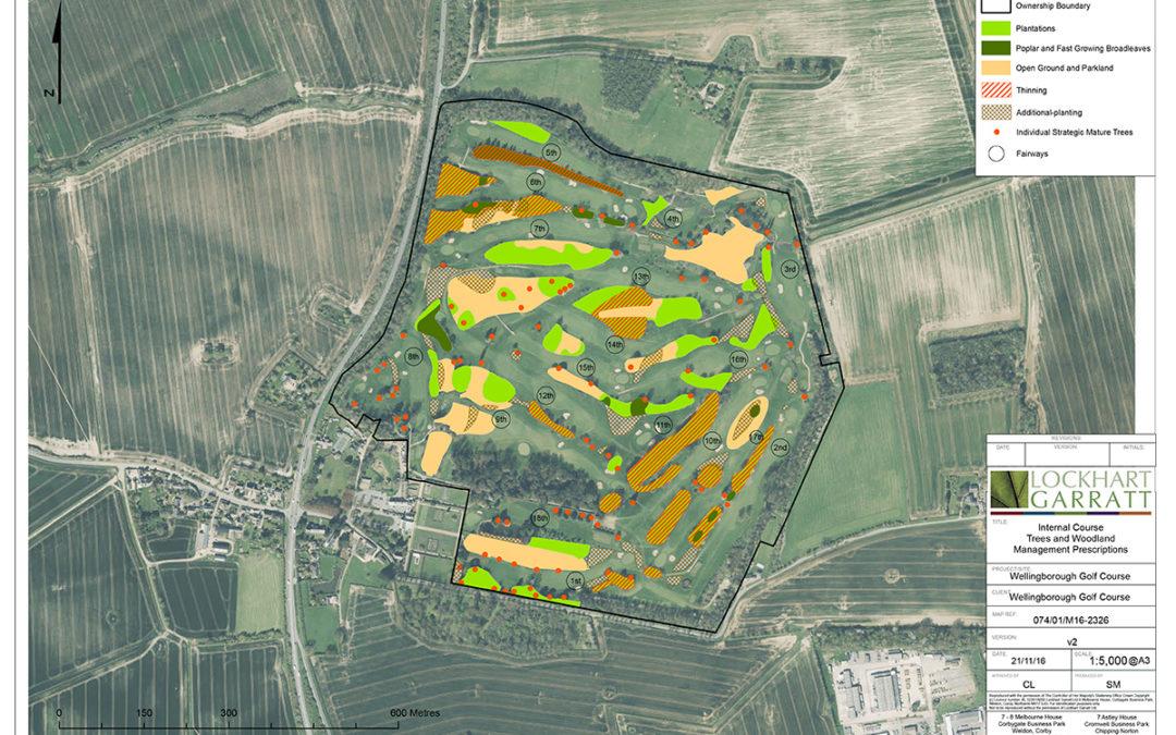 Wellingborough Golf Club – strategy for woodland management