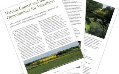 Natural Capital and the Opportunities for Woodland