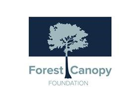 The Forest Canopy Foundation Launched