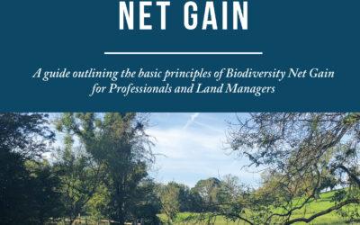 Biodiversity Net Gain: New Lockhart Garratt guidance now available